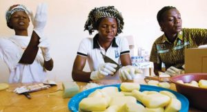 SHEA BUTTER TRAINING AND BUSINESS PLAN IN NIGERIA