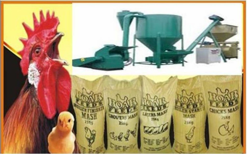 FEED MILL BUSINESS PLAN