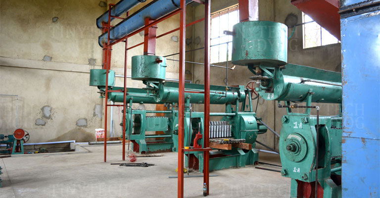 PALM KERNEL OIL (PKO) EXTRACTION BUSINESS PLAN